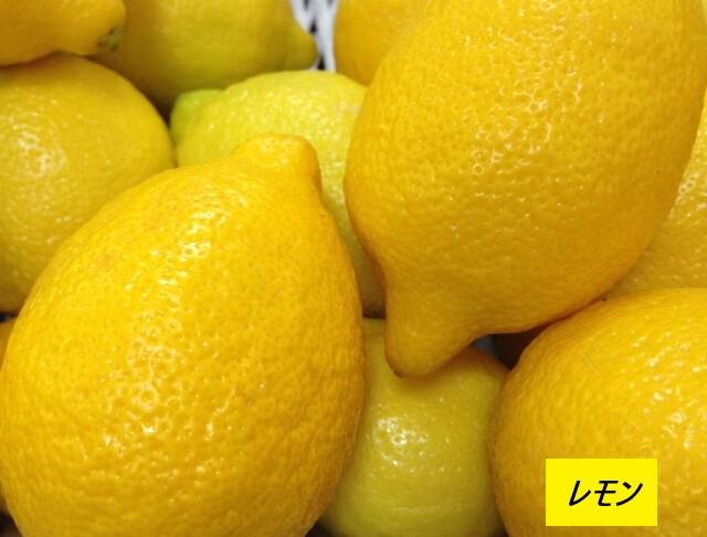 ミカン科レモン